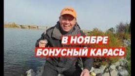 БОНУСНЫЙ КАРАСЬ В НОЯБРЕ.