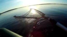 Рыбалка на щуку и судака [Карелия]