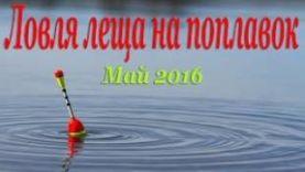 Ловля леща на поплавок весной, в мае