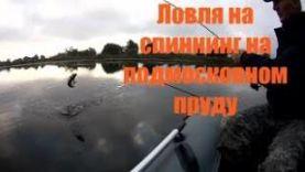 Рыбалка на спиннинг, ловля щуки на подмосковном пруду