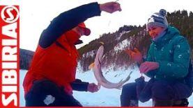Уроки ловли на балансир щуки и окуня зимой, Красноярское вдх 2016
