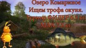 РЫБАЛКА НА ОКУНЯ: РУССКАЯ РЫБАЛКА 4 ИЩЕМ ТРОФЕЙНОГО ОКУНЯ ТУРНИР НА КОМАРИНОМ RUSSIAN FISHING 4