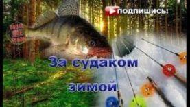 Судак на балансир (Тольятти)