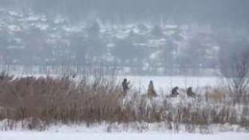 Щука на жерлицы зимой, Рыбалка в Самаре