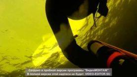 Подводная охота Волгоград март 2015