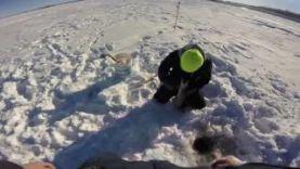 Ловля щуки на жерлицу зимой, озеро Девилс Винсконсин 2017