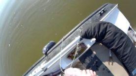 Ловля судака спиннингом на джиг, рыбалка на Ахтубе 2015
