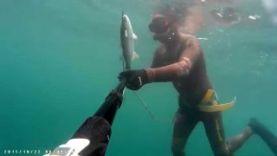 Подводная охота на лобана в Краснодарском крае 2015