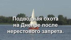 Подводная охота на Днепре после нерестового запрета