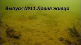 РЫБАЛКА НА ЩУКУ: ВЫПУСК № 11 ЛОВИМ ЖИВЦА И ЗАГЛЯДЫВАЕМ ПОД ЛЁД