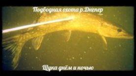 """Подводная охота """"Щука на Днепре"""", 2016"""