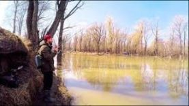 Ловля СУДАКА перед нерестом Рыбалка весной на Малой реке