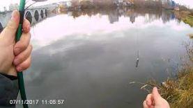 Ловля на отводной поводок пассивного окуня поздней осенью на реке Миасс