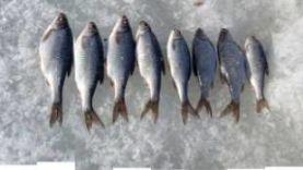 Зимняя рыбалка в Мордовии 2016-2017