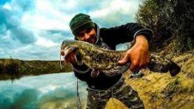 Рыбалка на реке Мокша! Поймал СОМА!!! / Мордовия, Темников
