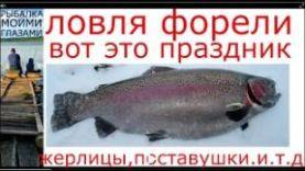 ловля форели на поставушки и жерлицы зимой в Красногоровке, Подмосковье