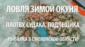 Ловля плотвы, судака и подлещика зимой в Смоленской обл., 2017