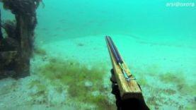 Подводная охота в Крыму, весна 2016