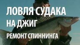 ЛОВЛЯ СУДАКА на ДЖИГ в АСТРАХАНСКОЙ ОБЛАСТИ на ВОЛГЕ.