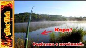 Рыбалка с ночёвкой на карпа и карася. Сильный туман на пруду.