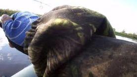 Ловля окуня на отводной поводок Lucky John Baby Rockfish