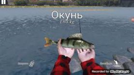 ЛОВ ОКУНЯ: ДЕНЬ ОКУНЕЙ ИГРА ULTIMATE FISHING SIMULATOR 1СЕРИЯ