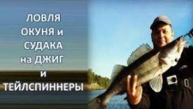 Ловля судака и окуня на джиг и тейлспиннеры на Волге, в Ульяновске