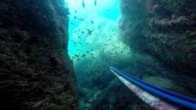 Подводная охота в Крыму, лето 2015