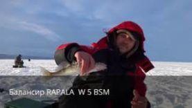 Ловля крупного судака на балансир зимой, Тольятти