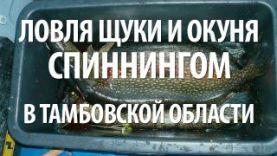 Щука и окунь ловля на спиннинг, вТамбовской обл., осенью