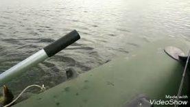 Рыбалка на щуку и окнуня, о. Смолино, залив Сухомесово в г.Челябинске,