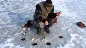 Как поймать карася зимой, 2016