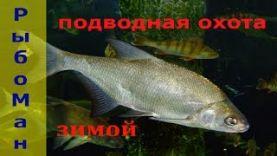 Подводная охота-зимушка-зима