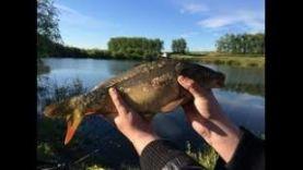 Рыбалка на Карпа, Походу попали в Икрабой