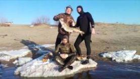 Один весенний день на Волге-подводная охота в Волгограде
