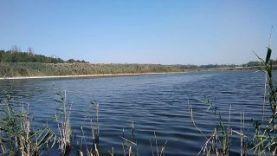 Ловля щуки на живца на поплавок, Краснодарский край
