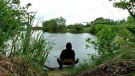 Приехали на пруд за карасем. Пруд есть, карася нет!)))
