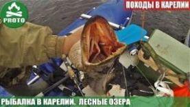 Лесные озера. Рыбалка в Карелии