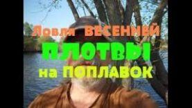 Ловля весенней плотвы на поплавок // Как поймать ?
