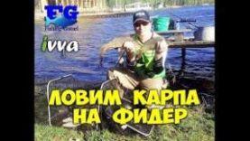 Ловим карпа на фидер: Озеро Чернецкое