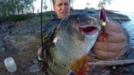 Очередная поездка в Карелию на рыбалку