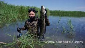 Подводная охота в июне в Казахстане
