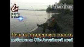 Лещ на фидерную снасть , рыбалка на Оби Алтайский край
