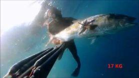 Подводная охота – 17 кг Амберджек , Франция