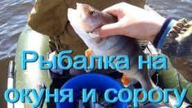 Рыбалка на окуня и сорогу 2017