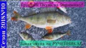 Ловля КРУПНОГО окуня на ручейника и мормышку, Зимняя рыбалка 2018
