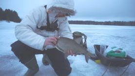 Утрення ловля леща-лучшая прикормка, Финляндия зима 2017