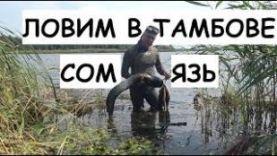 Подводная охота рыбалка: Тамбов Сом