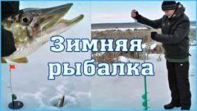Зимняя рыбалка на щуку на жерлицы | Печенежское водохранилище 2016