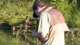 Рыбалка в Тамбовской области. Часть 1
